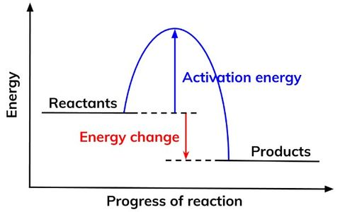 Reaction Profiles